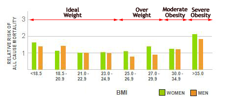BMI and Life Expectancy